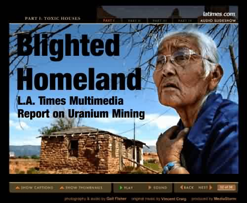 blighted_homeland_ad