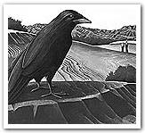 Crow Castaneda