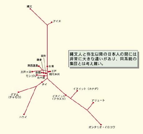 西日本人は弥生人 [無断転載禁止]©2ch.net->画像>95枚