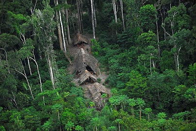 Uncontacted-Amazonian-tribe 1